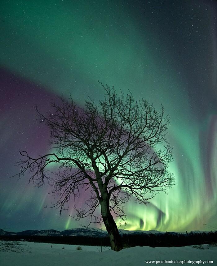 aurora boreale immagini nasa 10