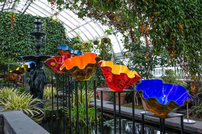 chihuly-garden-exhibition-new-york-botanical-garden-11