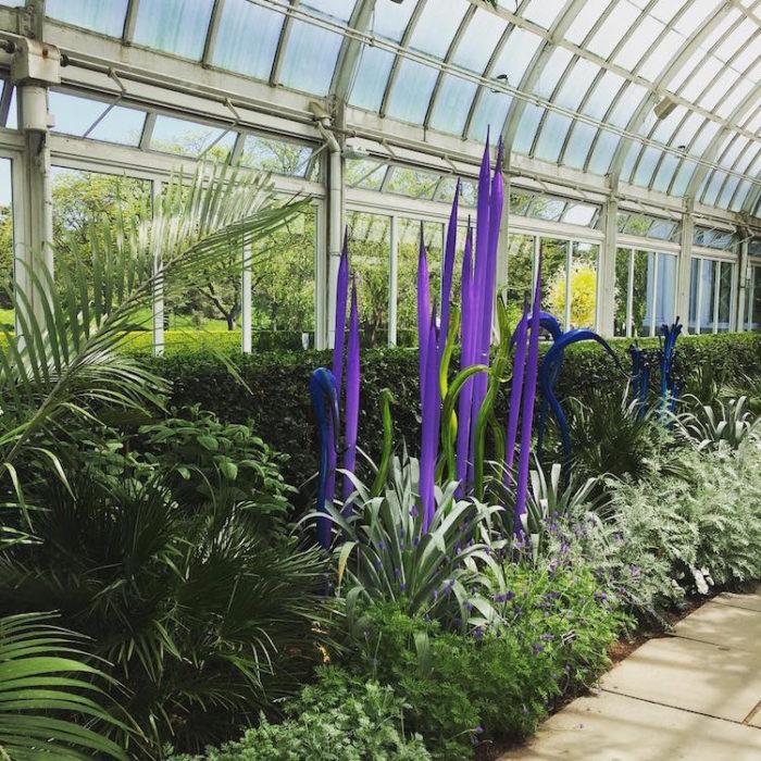 chihuly-garden-exhibition-new-york-botanical-garden-12