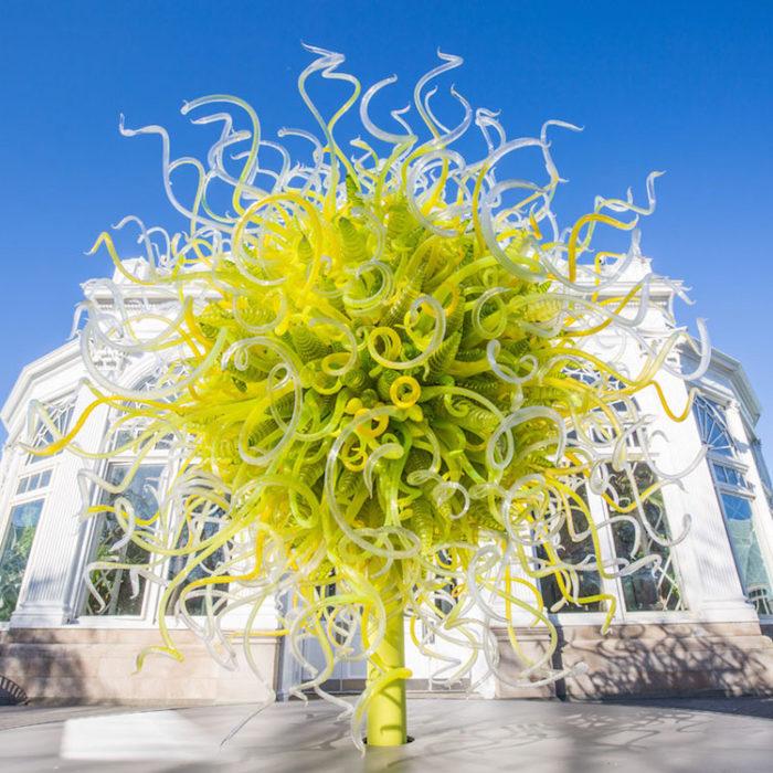 Le Scintillanti Sculture Di Vetro Di Dale Chihuly In Mostra Al Botanical Garden Di New York Keblog