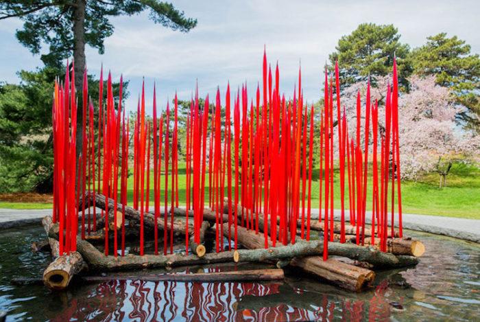 chihuly-garden-exhibition-new-york-botanical-garden-4