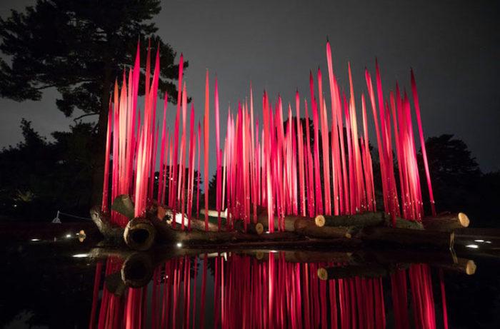 chihuly-garden-exhibition-new-york-botanical-garden-5