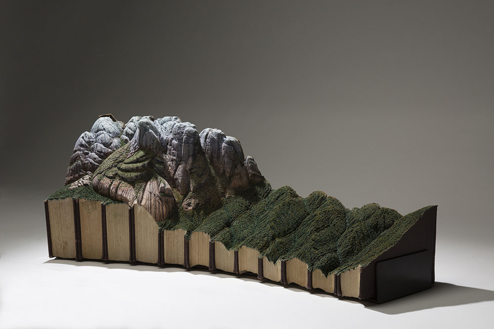 sculture-libri-vecchi-guy-laramee-04