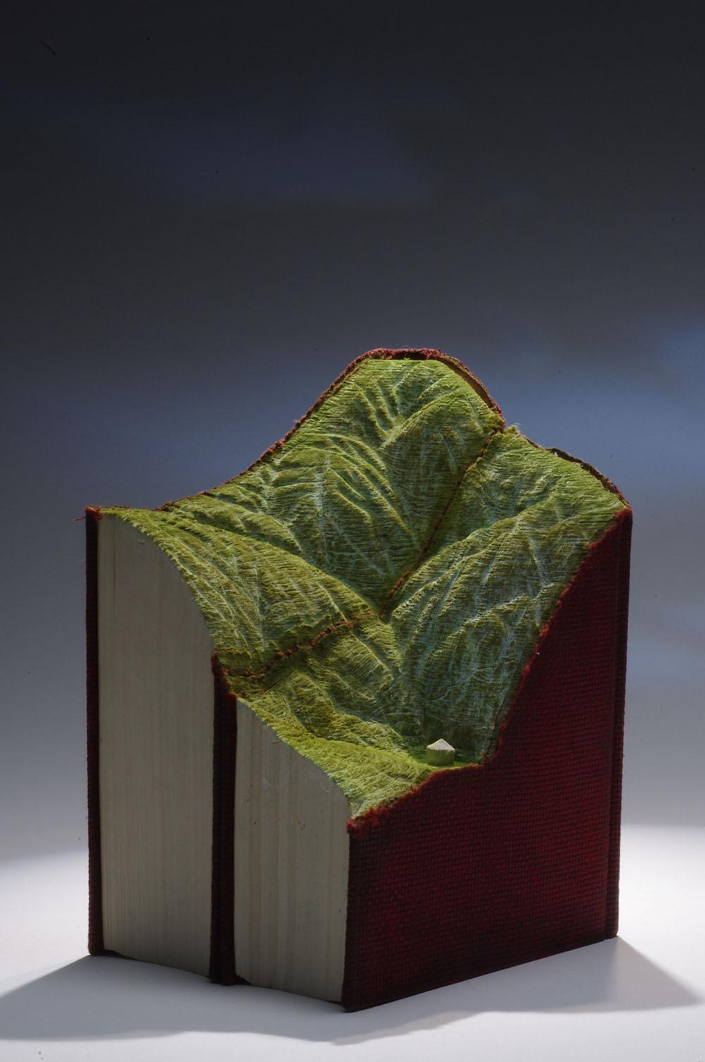 sculture-libri-vecchi-guy-laramee-14