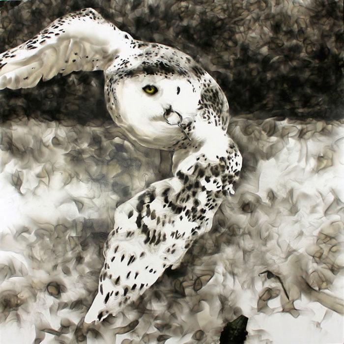 uccelli-dipinti-con fuoco-fumo-fumage-steven-spazuk-02