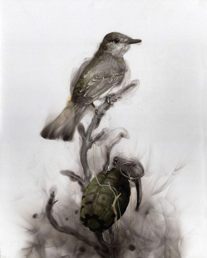 uccelli-dipinti-con fuoco-fumo-fumage-steven-spazuk-05