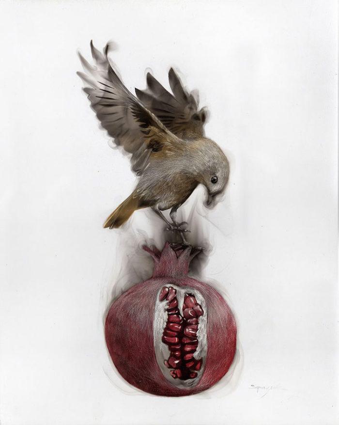 uccelli-dipinti-con fuoco-fumo-fumage-steven-spazuk-06
