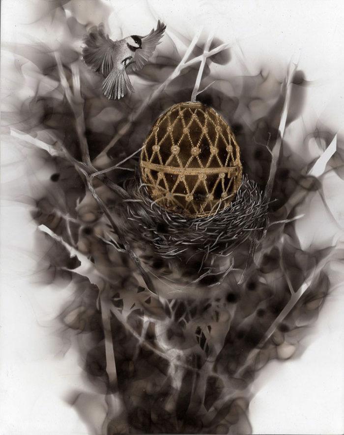 uccelli-dipinti-con fuoco-fumo-fumage-steven-spazuk-08