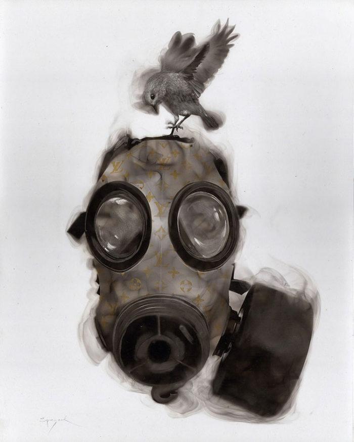 uccelli-dipinti-con fuoco-fumo-fumage-steven-spazuk-09
