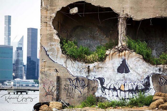 edificio-teschio-street-art-new-york-greg-suits-1