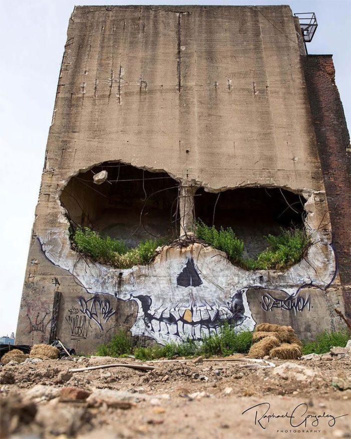 edificio-teschio-street-art-new-york-greg-suits-2