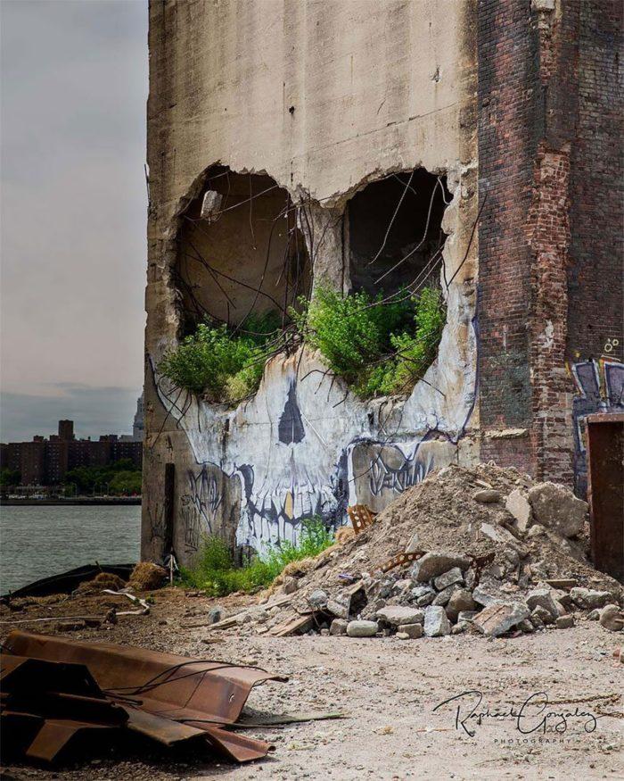 edificio-teschio-street-art-new-york-greg-suits-5