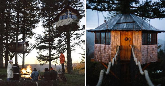Fotografo costruisce una casa sull 39 albero di lusso per viverci tutto l 39 anno keblog - Casa sull albero progetto ...