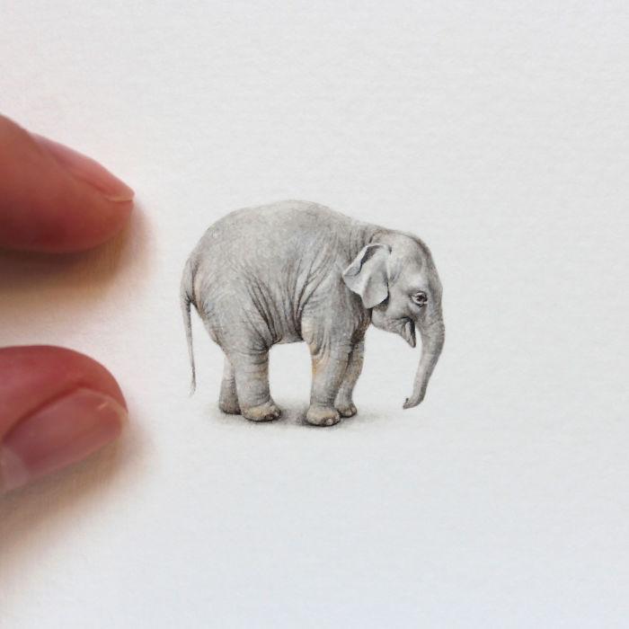 Dipinti Acquerelli Miniatura Animali Julia Las
