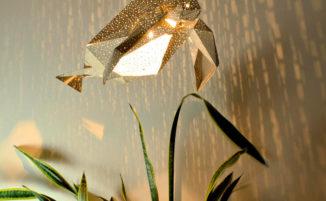 Lampade di carta fai da te che si ispirano alle creature marine