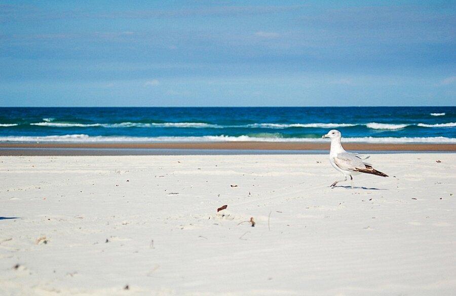 Spiagge Più Pericolose Mondo