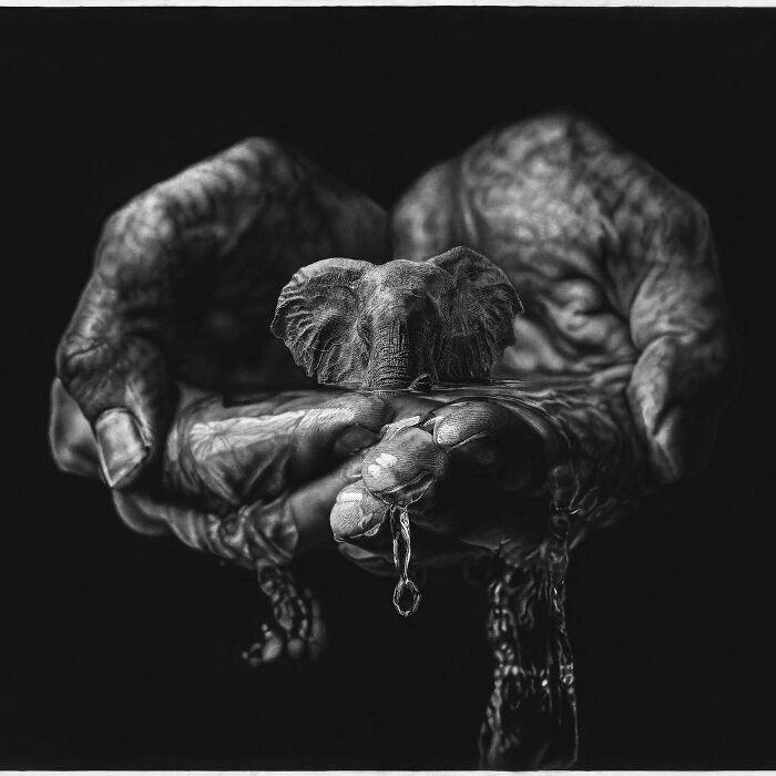 Disegni a Matita Iperrealisti Jono Dry