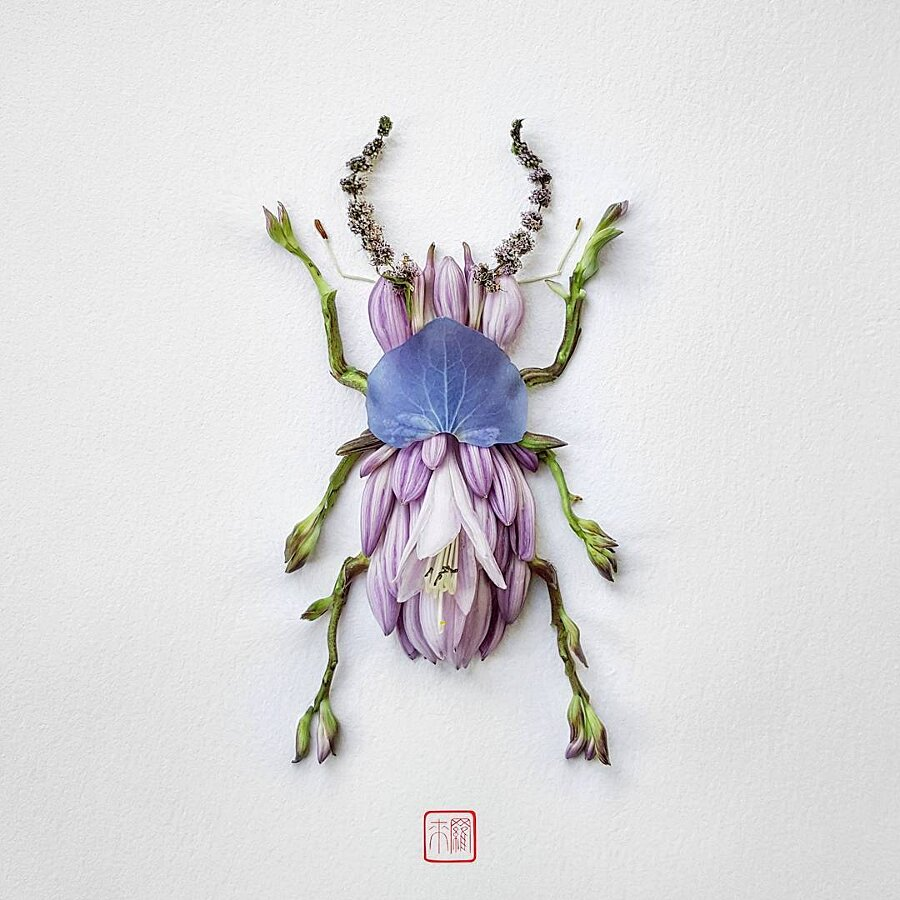 Insetti Fatti di Foglie Fiori Natura Insects Raku Inoue