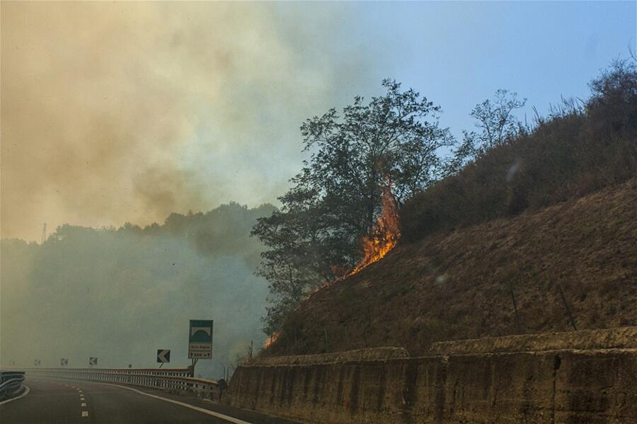 Incendi Puglia Calabria 2017 Johhny Garcea