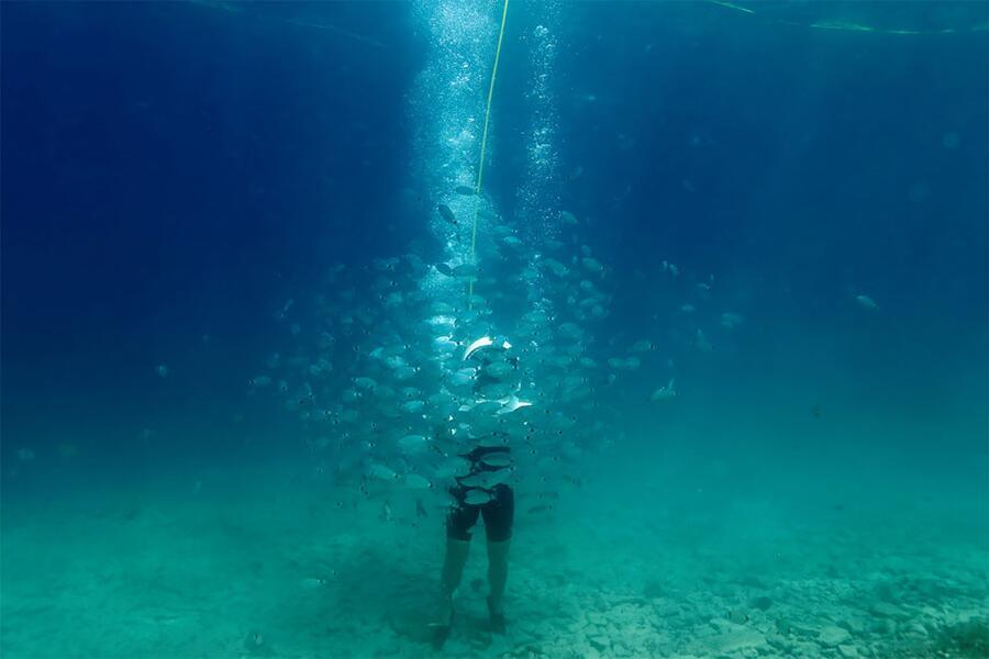 Parco Sottomarino Pola Croazia