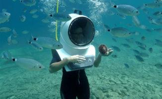 Un incredibile parco subacqueo in Croazia per passeggiare tra i pesci