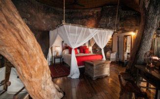 Una incredibile casa albero che si affaccia sul fiume Zambesi