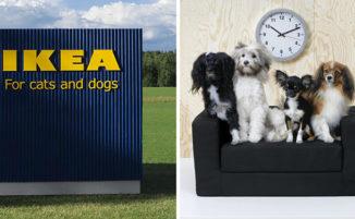 IKEA lancia una collezione di mobili per animali domestici