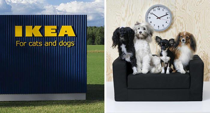 Mobili Per Gatti Ikea : Mobili gatti ke