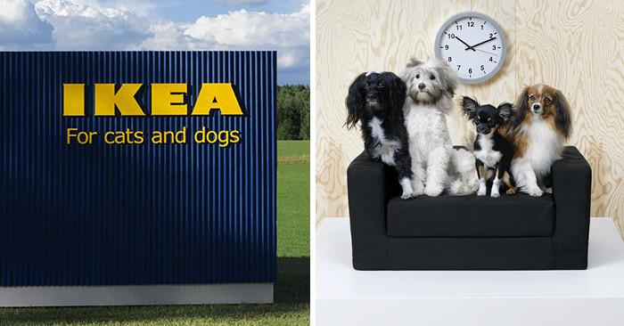 Ikea Lancia Una Collezione Di Mobili Per Animali Domestici Keblog