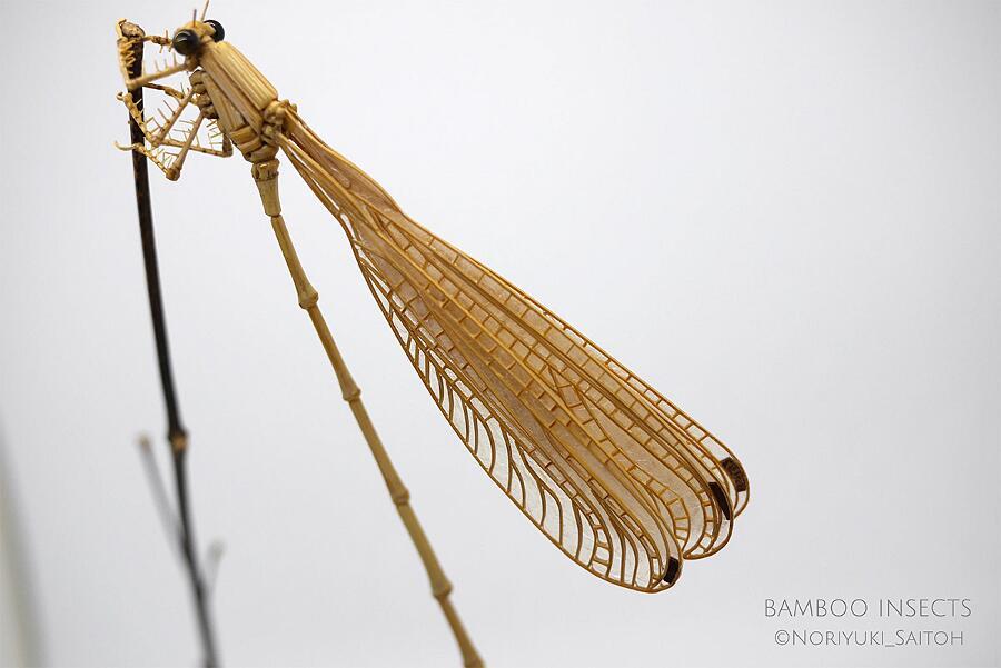Insetti Realistici In Bambù Noriyuki Saitoh