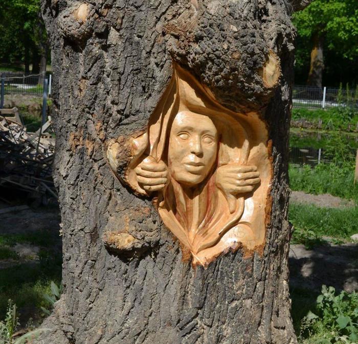 Sorprendenti sculture incise negli alberi con una motosega