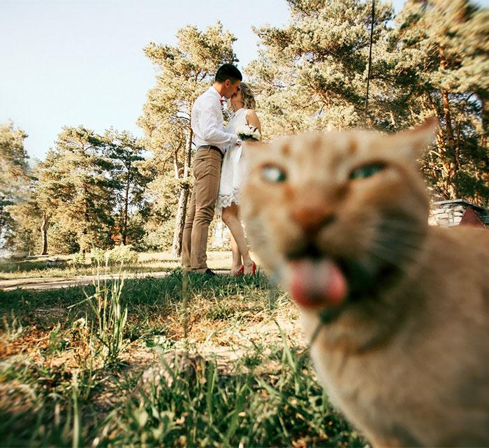 Foto Divertenti Matrimonio