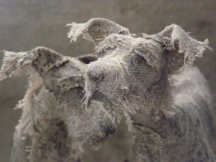 Sculture Di Cani Fatte Di Vecchie Stoffe Holy Smoke