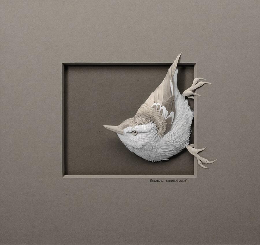 Sculture Di Carta In Rilievo Calvin Nicholls