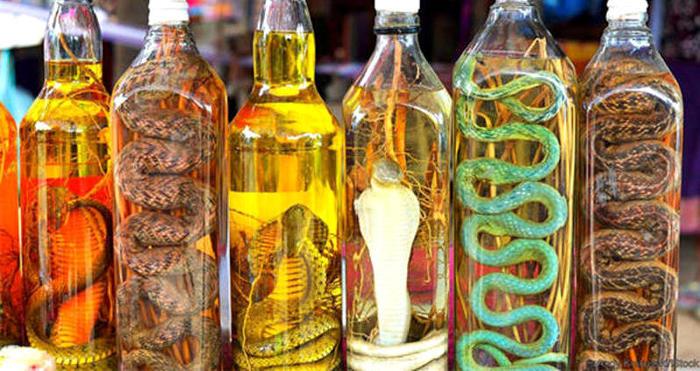 Vino di serpente: la medicina alternativa più terrificante del sud-est asiatico