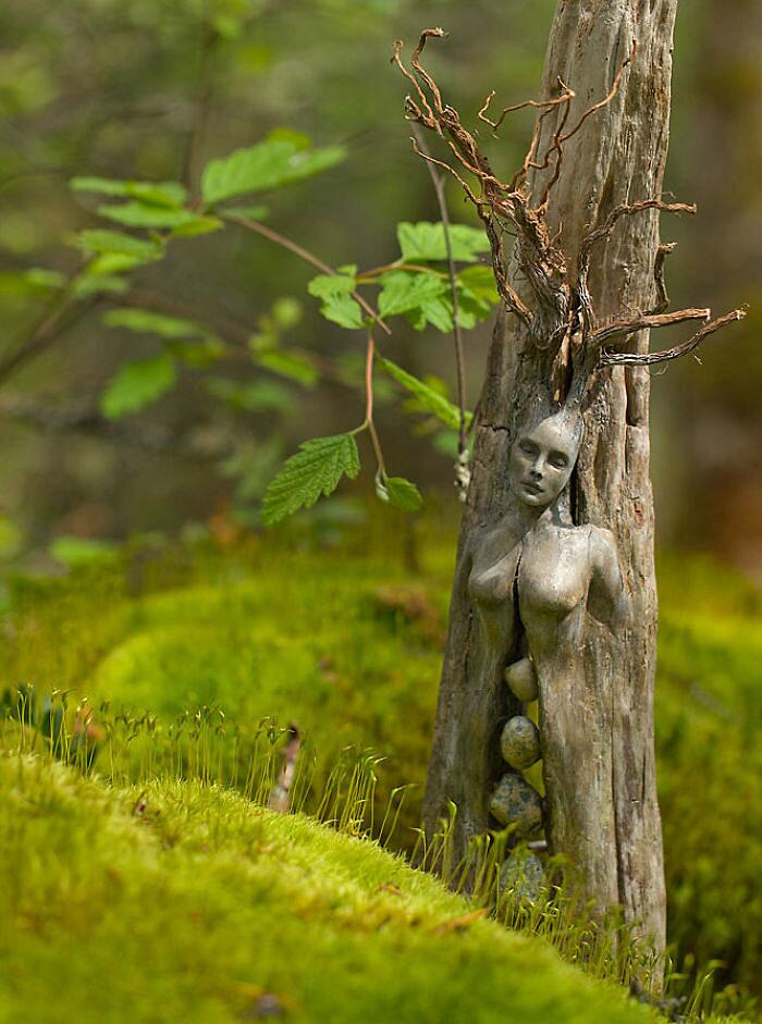 Sculture Surreali In Legno Debra Bernier