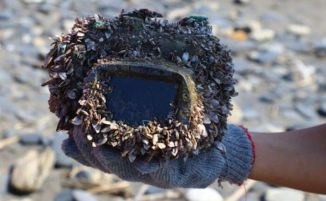Smarrisce la fotocamera in acqua, dopo più di 2 anni il mare la restituisce alla proprietaria