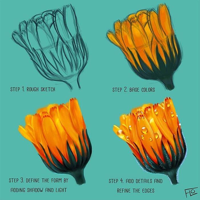 Illustrazioni Digitali Floortjes