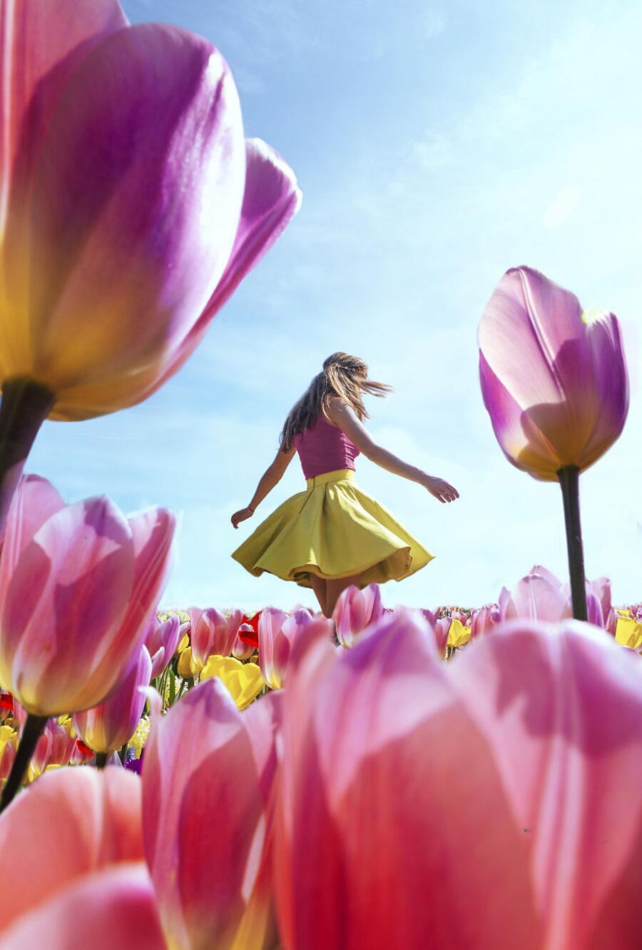 Campi di tulipani in Olanda e Paesi Bassi - howfarfromhome