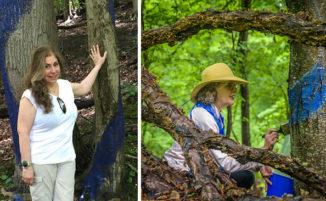 Usa l'arte per fermare la costruzione di un gasdotto in una foresta