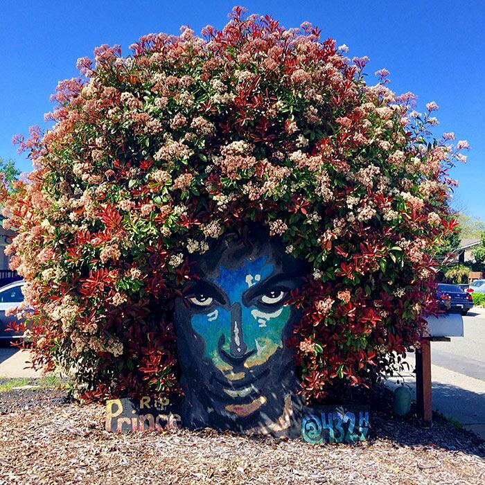 murale-omaggio-prince-fiorito-christine-
