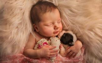 Ritratti di neonati e cuccioli teneramente accoccolati