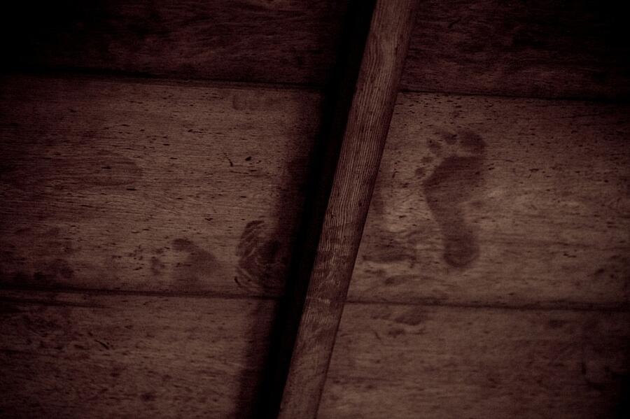 Impronte Di Sangue Soffitti Templi Kyoto Giappone