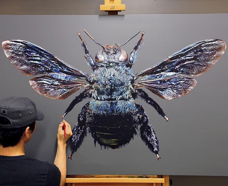 Dipinti Iperrealisti Young-Sung Kim