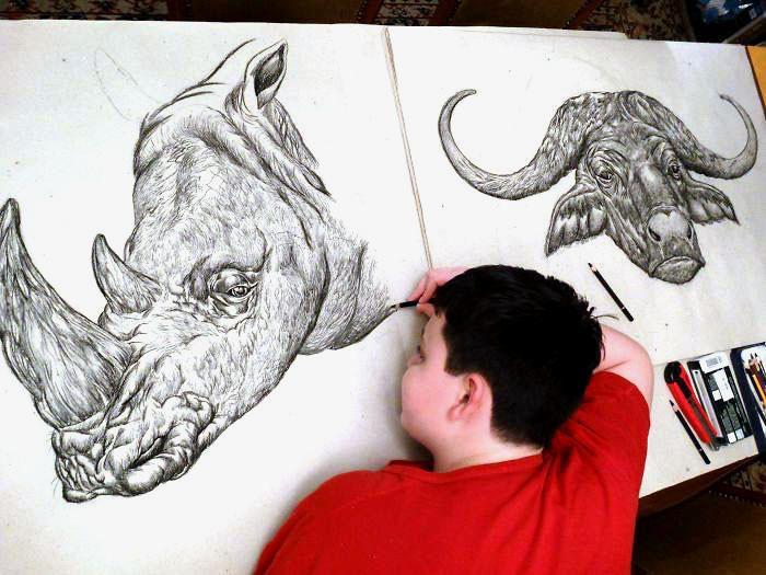 Quindicenne realizza stupefacenti disegni di animali a memoria