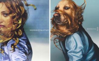 Ricrea foto iconiche di Madonna ma il protagonista è il suo cane