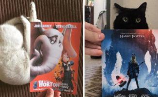 """""""Inserisce"""" gatti nei poster di film famosi, ed il risultato è davvero comico"""