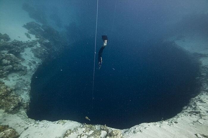 Doline Marine Nel Mondo