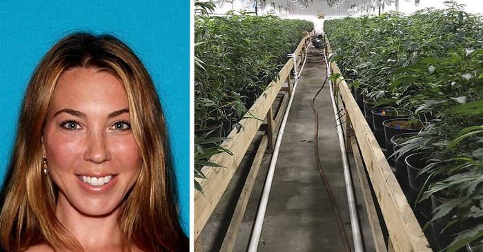 Mamma in California arrestata per enorme organizzazione di marijuana