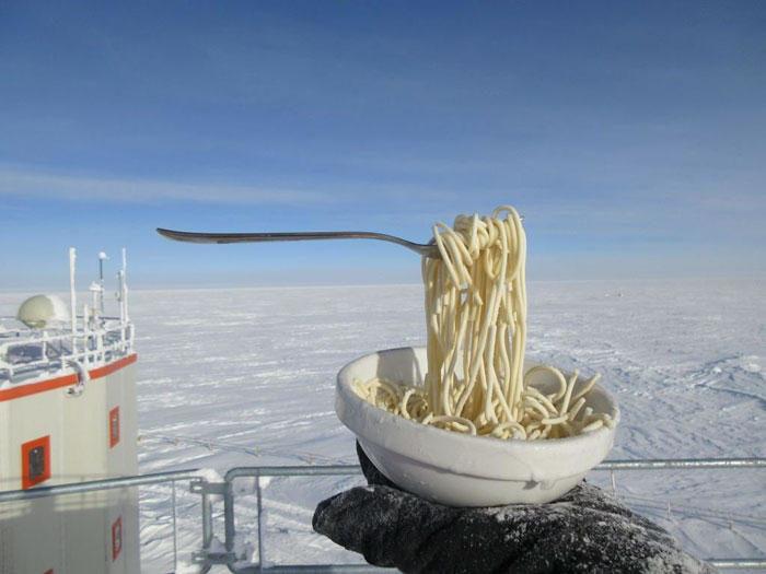 Ecco cosa succede in Antartide quando provi a mangiare all'aperto